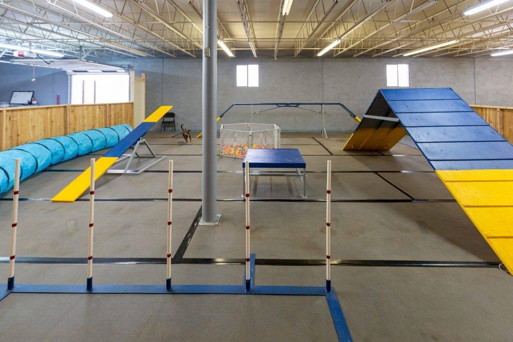 dog-boarding-grooming-vet-service-oklahoma-city-indoor-play-yard